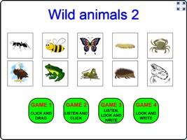 Wild animals 2